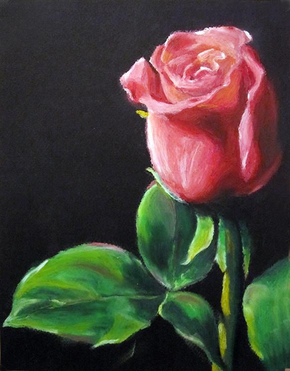 Rose Peinture